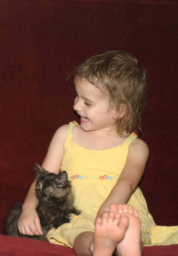 "Submitted by Vania:  ""Small child with formerly feral foster kitten Tortie in AZ"""