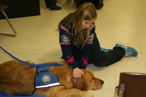 Comfort dog and child in Newtown, CT (via Facebook)