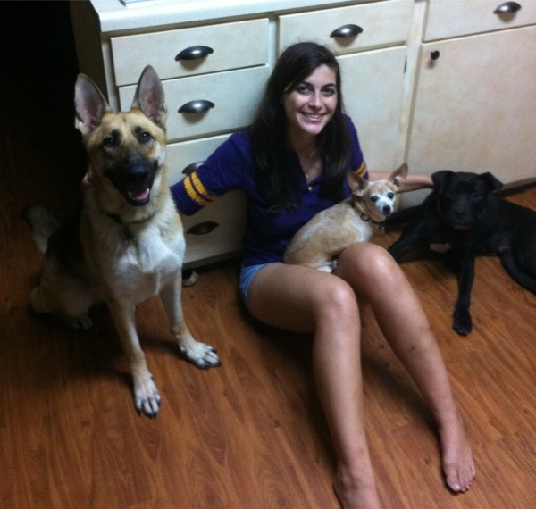 "Submitted by Callie:  ""Callie sitting with Heidi (German shepherd), Chica (chihuahua), and Tip (pit mix)."""