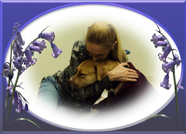 """Submitted by Dot:  """"My Friend Cheri comforting """"Progie"""" right after her knee surgery. Yanceyville, NC.  Photo by Dot Kirby"""""""