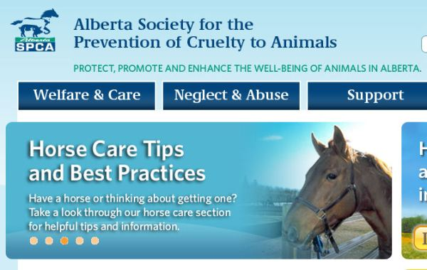 Screengrab from the website of the Alberta Society for the Prevention of Cruelty to Animals.