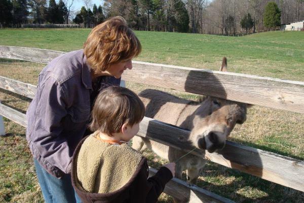 faye and donkey I