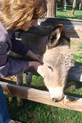 Faye and donkey (via Facebook)