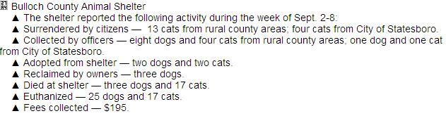 Screengrab from the Statesboro Herald, September 15, 2013