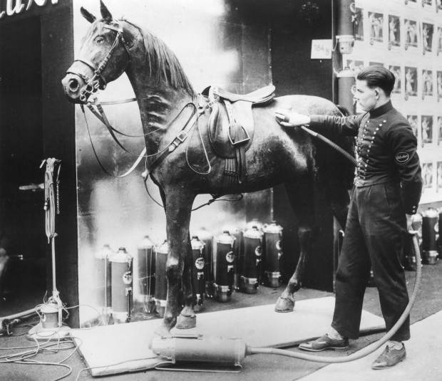 If I vacuum my horse, do I still have to vacuum my house? [Via]