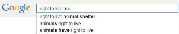 google search6