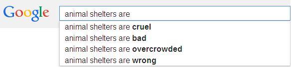 google search7