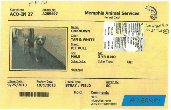 259497 MAS cage card