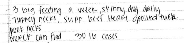 Portion of the handwritten notes attached to the Forks PD report, November 2012