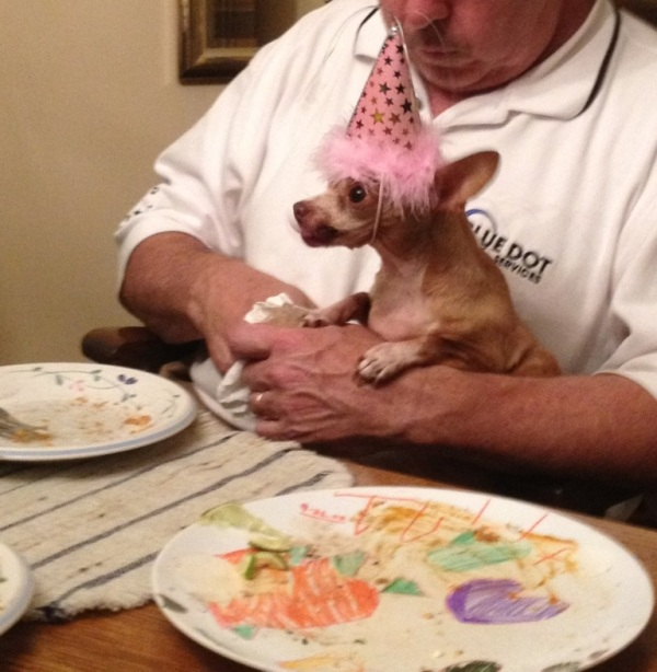 My father and Chichi in TN. Chichi was a senior chihuahua at a high kill shelter. She is the light of my dad's life. She is celebrating her rescue with her party hat on.  - Andrea