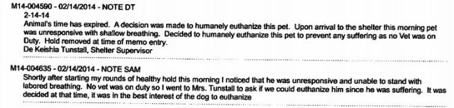Two entries by two different MAS staff members indicating no vet was on duty at the time the dog was found unresponsive and the decision made to kill him.
