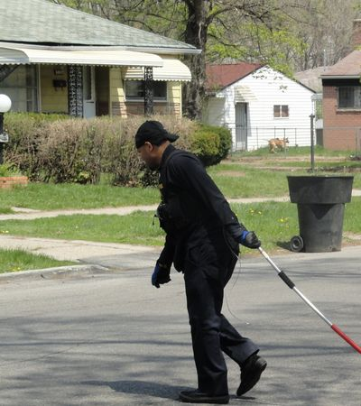 A Detroit ACO chokepoles a dog, possibly dead, across a street.  Screengrab from mlive.com.