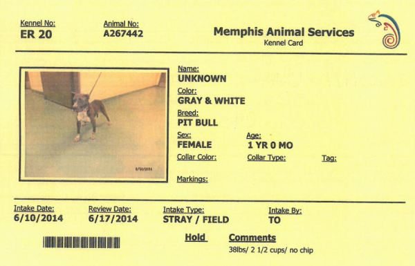 267442 cage card