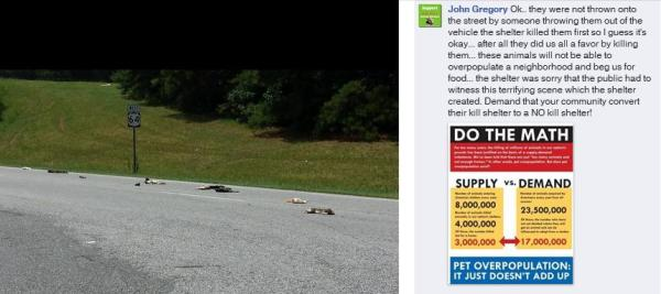 Screengrab from Facebook showing a trail of dead pets on a NC highway.