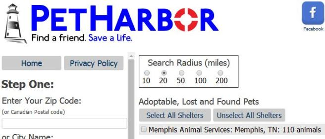 Screengrab from PetHarbor showing 110 animals listed by MAS on October 21, 2014.
