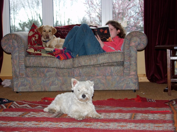 """Me and my dogs 10 years ago, after a long walk. I'm happy to add that today, when walking the same dogs, I got stopped and asked about my 'puppies'!""  (Photo submitted by Connie.)"
