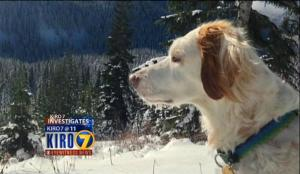 Cody, as shown on the KIRO website.