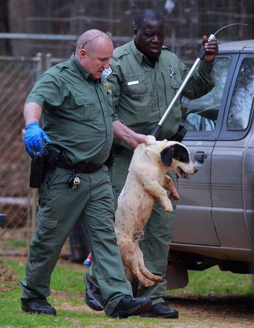 Anderson Co ACOs appear to be mishandling a dog in this photo circulated on social media.