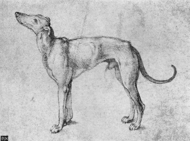 Sketch by Albrecht Durer