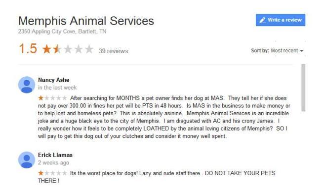 mas google reviews
