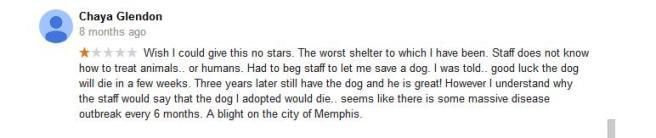 mas google reviews3