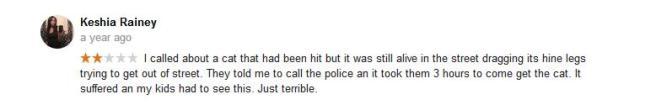 mas google reviews6