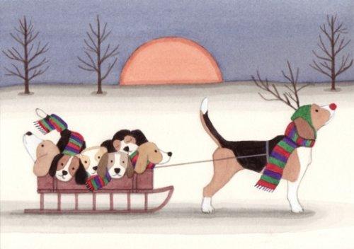 beagle sled