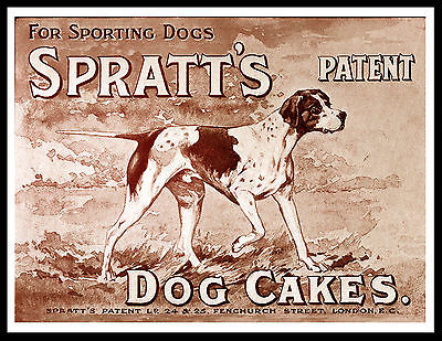 pointer spratts