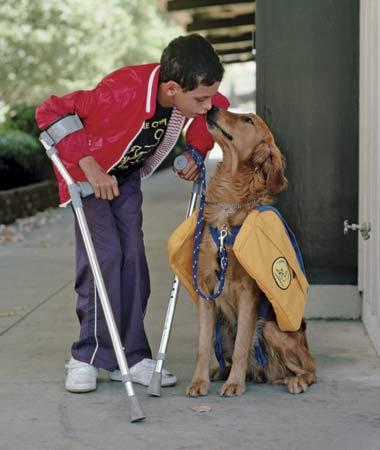 service.dog and boy